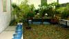 Empresa transforma sala em floresta para atividade ambiental