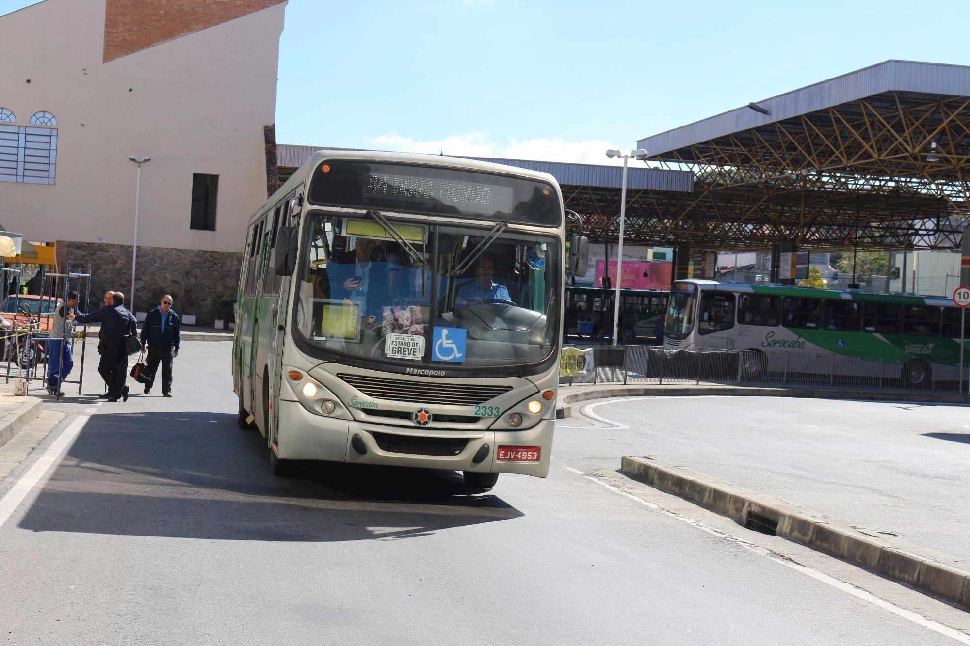 motoristas, onibus, transporte urbano, Fabiana Caramez