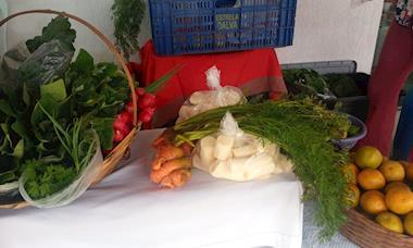 Consumir alimento orgânico é resistência contra veneno na mesa