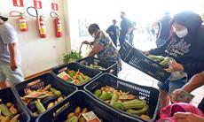 Banco de Alimentos alerta sobre desperdício em edição da 'Nossa Feira Livre'