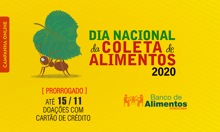 carol, outubro, 2020, imprensa, Divulgação