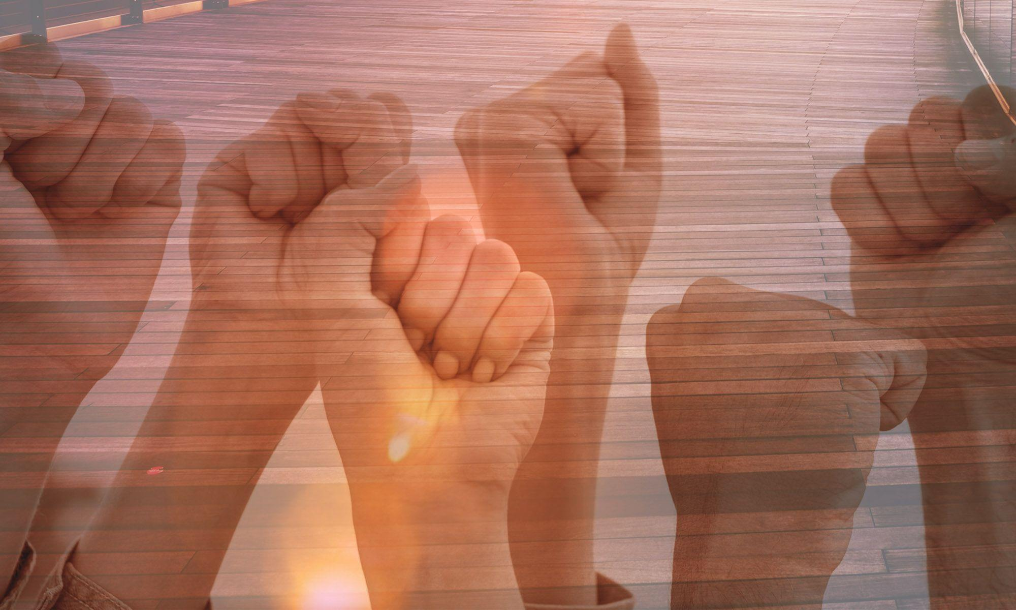 força, sindicato, editorial, Divulgação