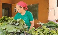 Banco de Alimentos homenageia os agricultores no Dia do Agricultor